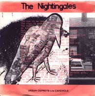The Nightingales - Urban Ospreys